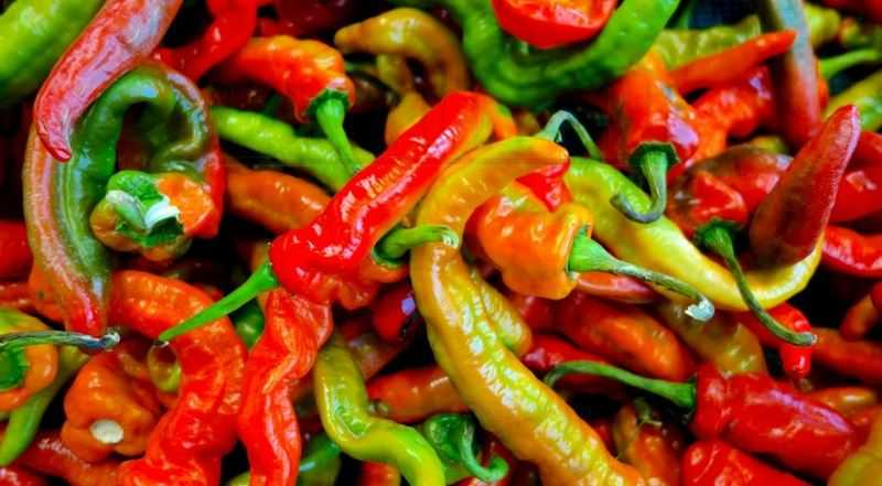 Италиан Лонг Хот перец | Italian Long Hot Pepper